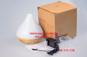 GX13K.2