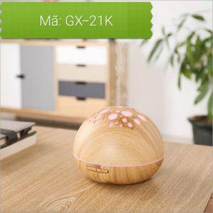 GX21K.3